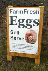 Looking for Local: Making a U Turn for FreshEggs